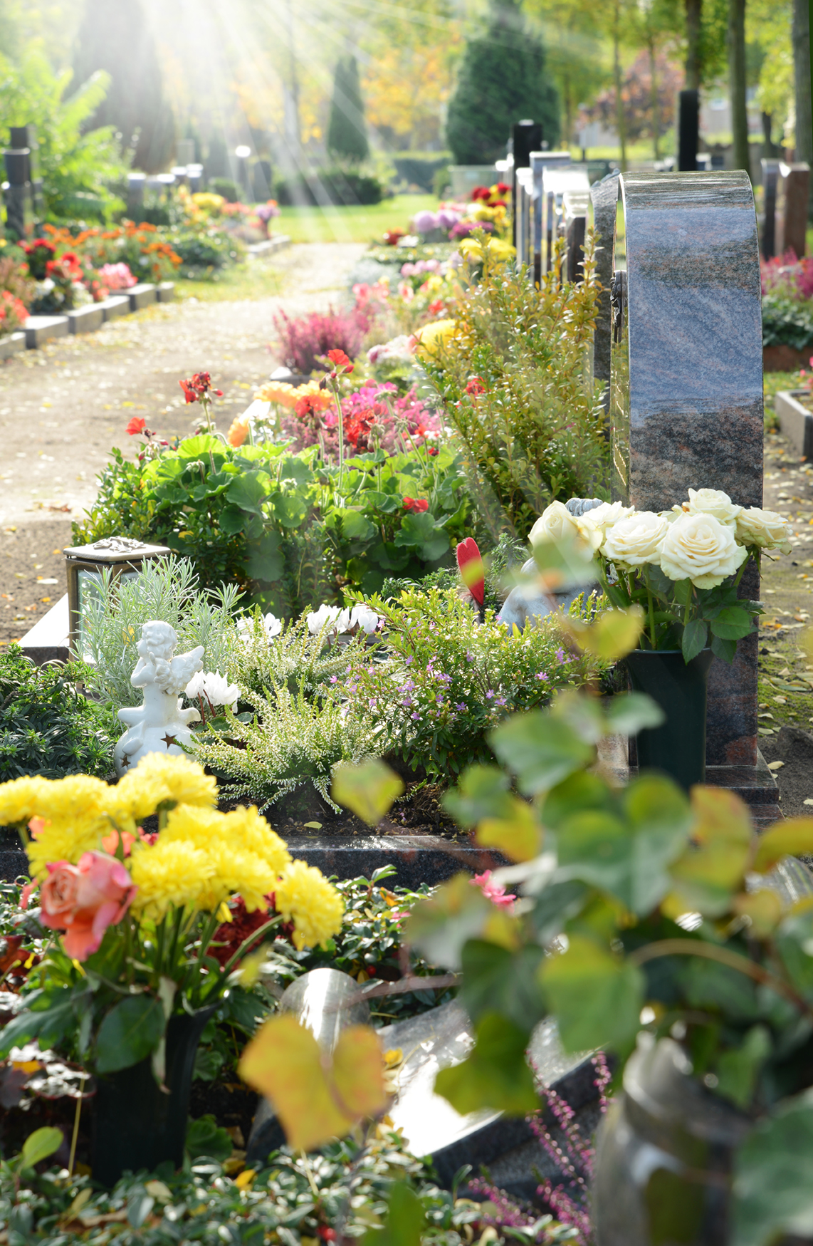 Friedhof 37